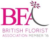 bfa-member-16-low-res